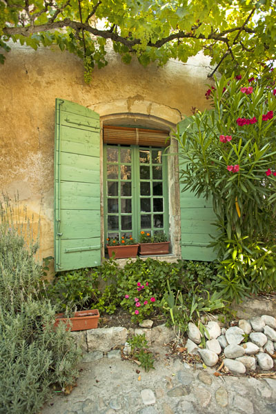 green window bougainville