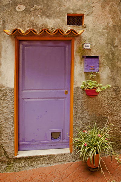 purple cat door