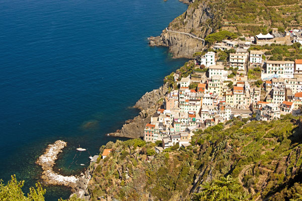 riomaggiore from above